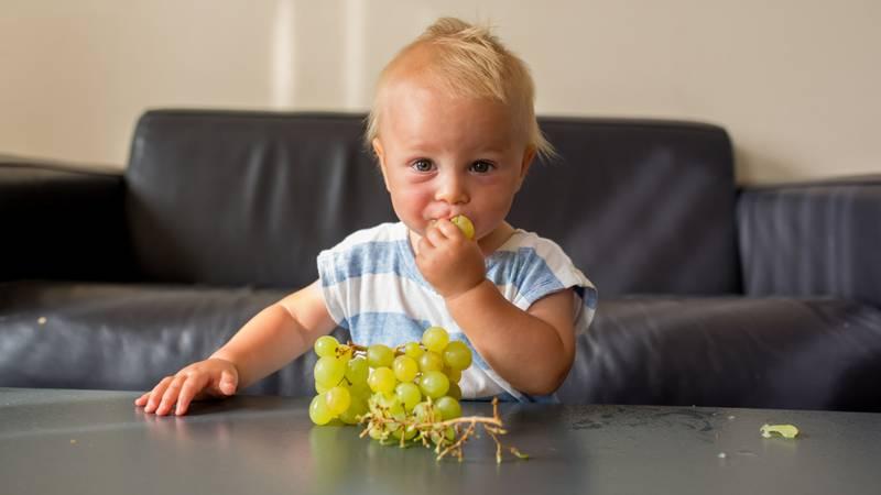 Jongetje eet druiven